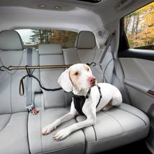 Kurgo hundetøjringssnor til bil