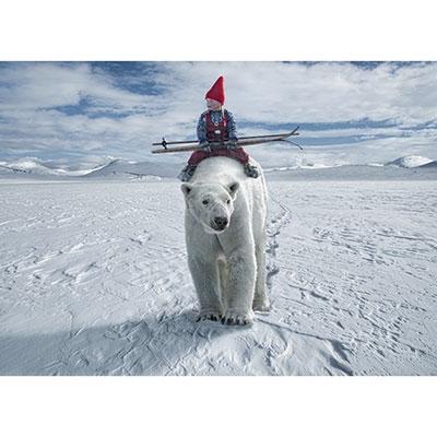 Riding the Polar Bear, 1000 brikker