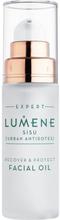 Lumene Sisu Recover & Protect Facial Oil 30 ml