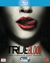 True Blood - Season 1 (5 disc) (Blu-ray)