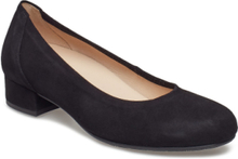 Slip-Ons Shoes Heels Pumps Classic Svart Gabor
