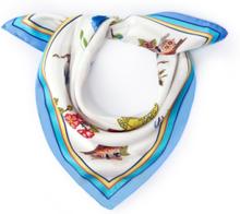 Scarf i 100% silke från Peter Hahn mångfärgad