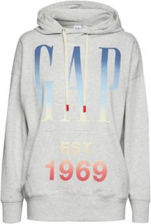 Gap Tunic Hd Hoodie Trøje Grå GAP