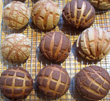 bread machine conchas mexican sweet bread