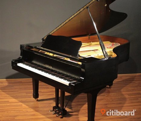 Yamaha Tyros 5 Keyboards/Yamaha C3/C6 Grand Piano