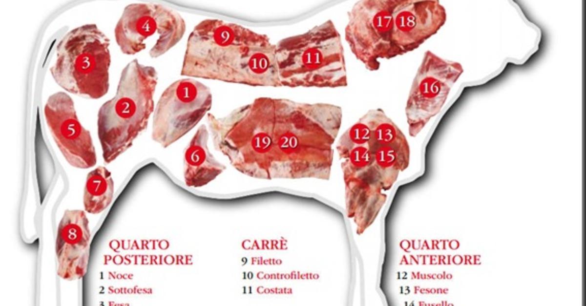Ricette di come cucinare il muscolo di bovino mytaste - Come cucinare fettine di bovino ...