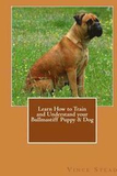 Learn How to Train and Understand Your Bullmastiff Puppy &; Dog