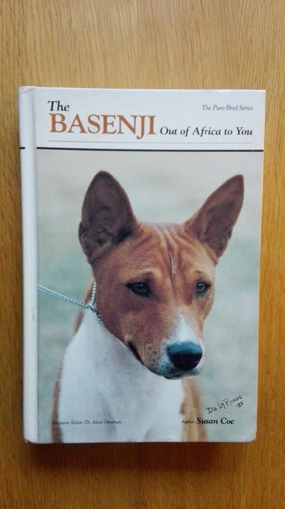 The Basenji: Out of Africa to You (Pure-Bred)