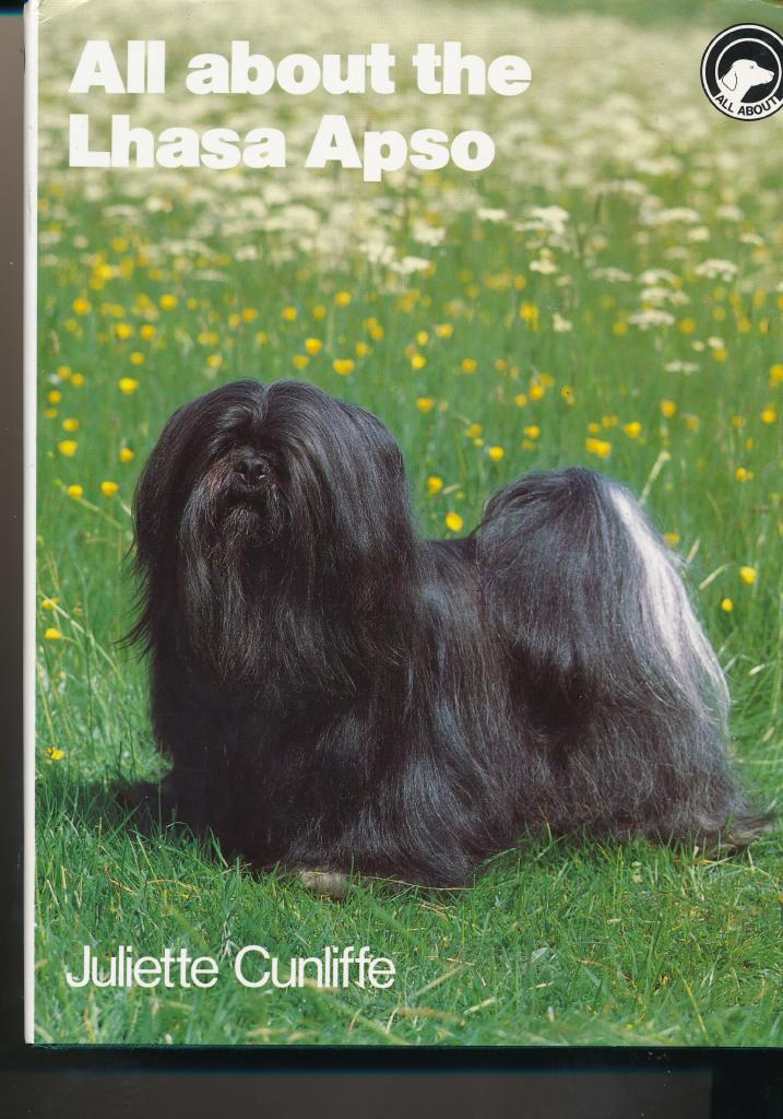 All about the Lhasa Apso